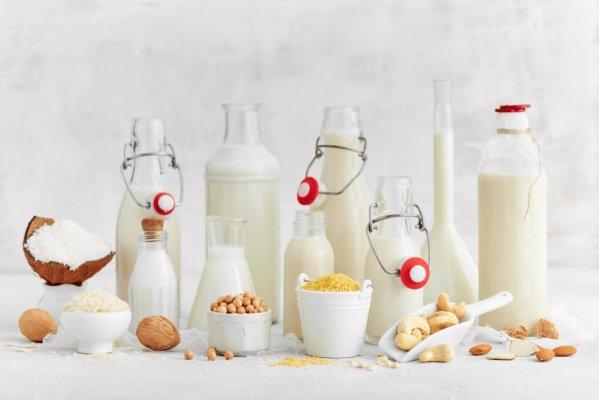 Phần lớn các sữa động vật và sữa thực vật đều là các loại sữa cho bà mẹ sau khi sinh